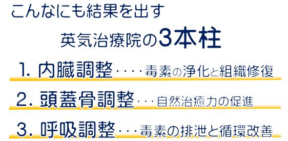 アトピー改善の3本柱