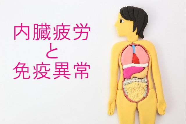 内臓疲労と免疫異常