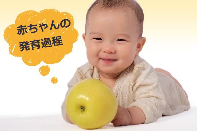 アトピー赤ちゃんと発育過程