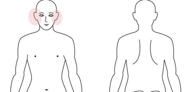 関節と耳の関係