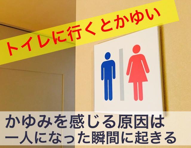 トイレに行くとかゆい
