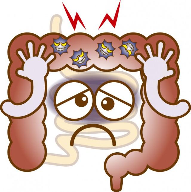 腸内環境の悪化でアレルギー症状が起こる