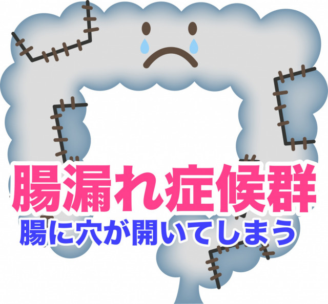 腸漏れ症候群の病態