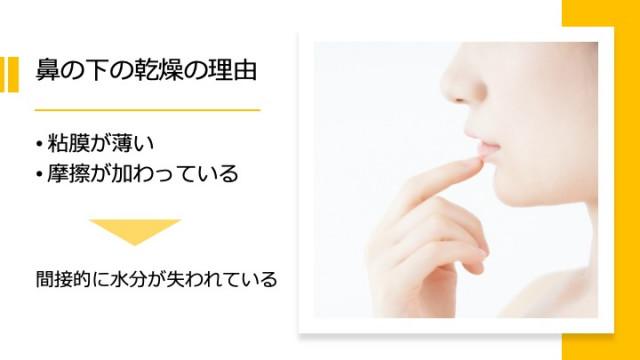 鼻の下の乾燥の理由
